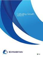 ICIP-Sustainability-Report-2013